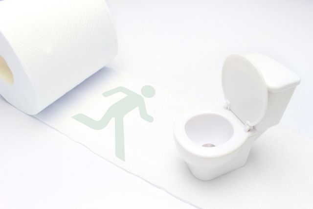 トイレへの道