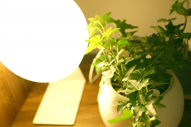 リフォーム、照明